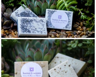 Lavender Chia & Activated Soap and Green Tea