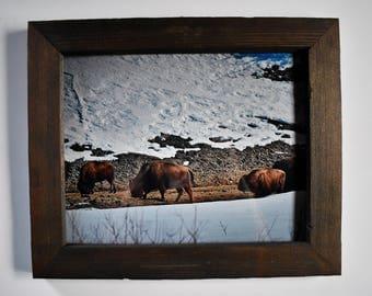 8x10 Buffalo Meadow rustic frame