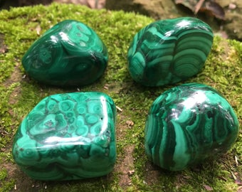 "Malachite - Tumbled stones crystals - M - L - XL - 1.2"" - 2"""