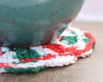 Christmas Crochet Plant Mat // Christmas // Plant Trivet // Plant Coaster // Farmhouse Style // Rustic