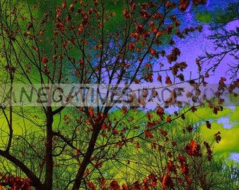 "INBETWEEN DAYS metal print 20""H x 16""W one of a kind"