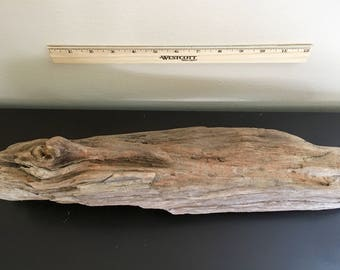 Pacific Northwest Driftwood