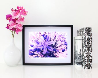 Wild, Floral Photography, 6x8 matted print, wall art, matted photo, 6x4 print, Flower print, Flower Photo, Modern Art