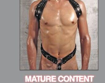 Full body harness DESIGN-1