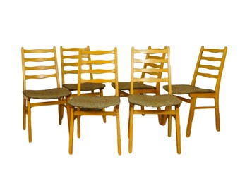 Large set. 6 beech chairs in bright with new upholstery and cover - 1960s