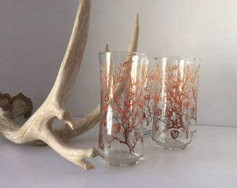 Forest Tall Drinking Glasses | USA | Vintage | Retro
