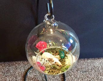Taxidermy mini glass terrarium with metal stand