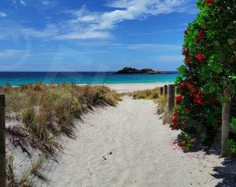 Ocean Beach, New Zealand - Landscape Photography Art Print