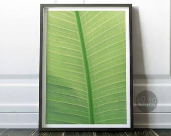 Tropical Wall Decor, Tropical Leaf Print, Printable Art, Living Room Decor,  Wall