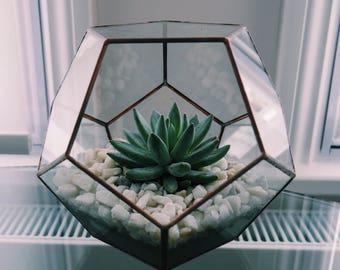 Geometric Copper Terrarium & Succulent