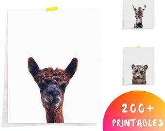 Farm Animal Print, Animal Printable art, Nursery Decor, Animal Decor, Safari Decor, Downloadable Animal, Downloadable Nursery