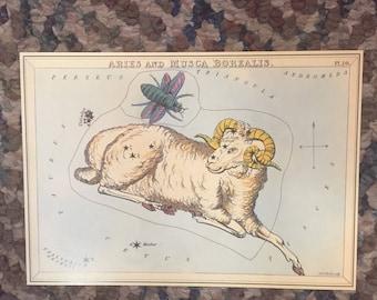"""Vintage Constellation Star Charts  5.5x8"""" pt 6"""