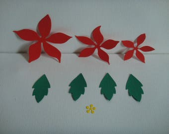 Poinsettia red, green and yellow for creation set