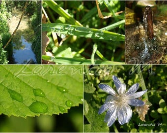 Photo collage Nature 30X40cm and water in the Var