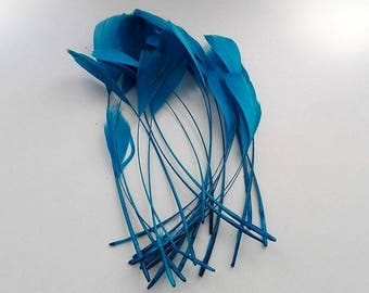 set of 10 turquoise blue feathers 15cm