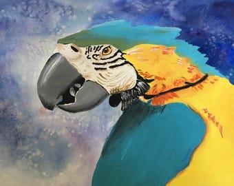 Parrot Original Hand-drawn Artworkd