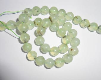 Beautiful Prehnite 10 mm beads