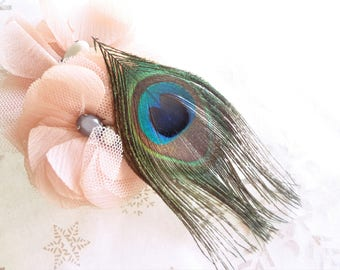 Peacock feather, feather of Peacock + or - 14 cm