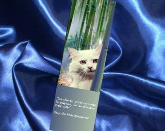 """Set of two bookmarks: """"cats, it's like the one..."""""""