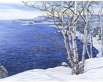 February Shore (Split Rock Lighthouse, MN, Lake Superior)