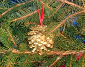 Pine Cone Christmas hanging decoration