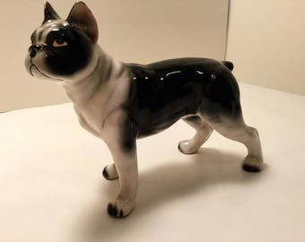 Boston Terrier Bulldog ceramic Figurine mid century 50's