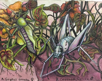 Tangled Bugs - colorful bug illustration in mixed media