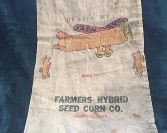 1950's Seed Sacks- Hamtpon, Iowa