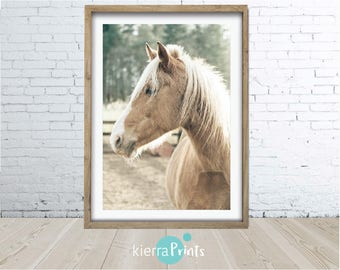 Horse Print, Digital Download, Large Printable Poster, Wall Art, Home Decor, Modern, Colour, Photograph