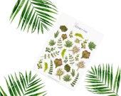 Succulents Stickerset-Watercolor sticker-pretty planning-scrapbooking-bullet journaling