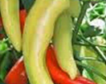 Pepper, sweet hungarian yellow wax seed, heirloom, organic, non gmo, 20+ seeds