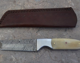 Damascus Steel Hunting Tanto Knife with Fossil Bone Handle SK 406B