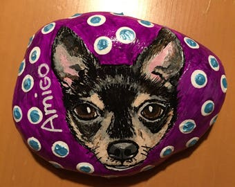 "Custom painted Rock Pet, ""Amigo"""