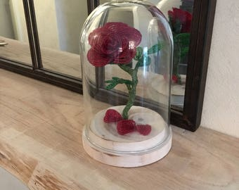 Eternal rose under glass
