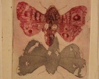 Engraving (Metamorphosis) print