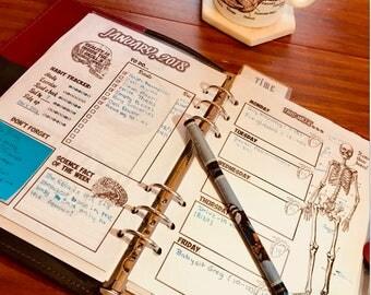 A5 Anatomy Planner - 2018