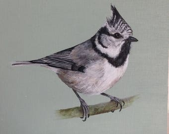 Crested Tit Original Painting