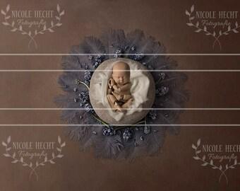 Neugeborenenfotografie Digital Background