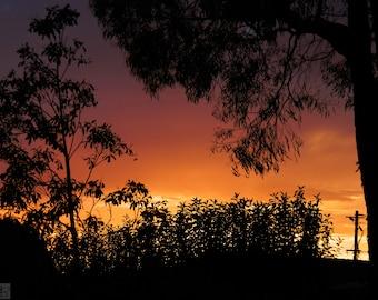 Digital Photo - Ombre Dawns 2 - Sunrise Dawn Nature Silhouette Morning