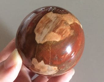 "Petrified Wood Round Sphere Ball Shape Polished Carved Stone 2 1/2""  380g  (94) FREE SHIPPING"