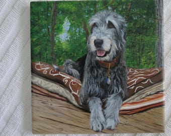 Pet Portrait 6 x 6 inch Ceramic Tiles Hand Painted and Made to Order using your photo Irish Wolfhound by Shannon Ivins