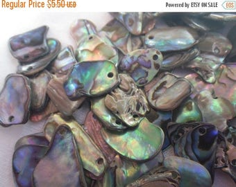 SALE 30% Off Abalone Shell Small Tumbled Freeform Drilled Chips 20 Pieces