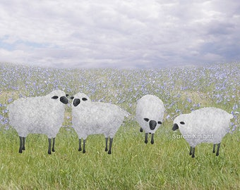 sheep and chicory - signed 8X10 inch art print - 4 fluffly white sheep green grass periwinkle flowers rural farm scene