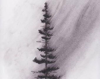 Windblown Pine ORIGINAL CHARCOAL drawing