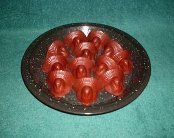 New Primitive Turkey Wax Tarts/Bowl Fillers Cinnamon Sticks