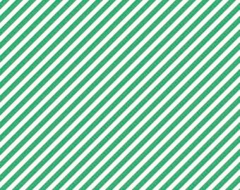 ON SALE On Trend by Jen Allyson for My Mind's Eye Mint Stripe