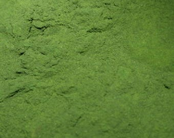 Chlorella Powder 8 oz. Over 100 Bulk Herbs!