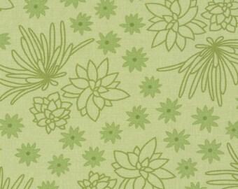 Terrarium (17285-49) Olive Succulents by Elizabeth Hartman