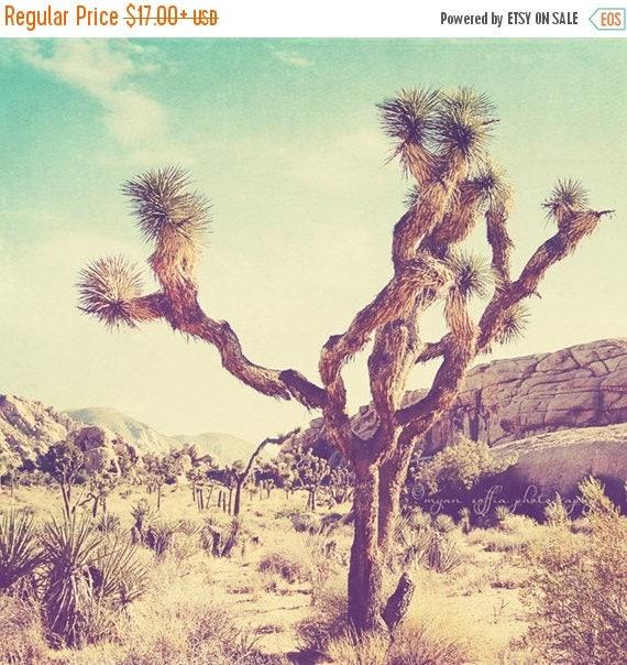 SALE Joshua Tree national park photo, California travel, Palm Springs desert photography, nature, vintage blue yellow, art print
