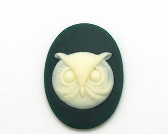 Cabochon 40x30mm - resin - OWL